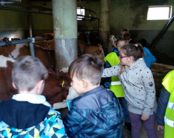 naravoslovni-dan-kmetija-skledar-3